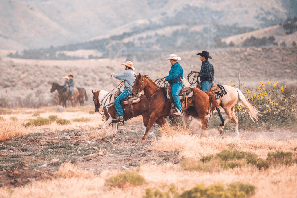 cowboys riding a horse on the mountain while listening to the country songs about riding a horse