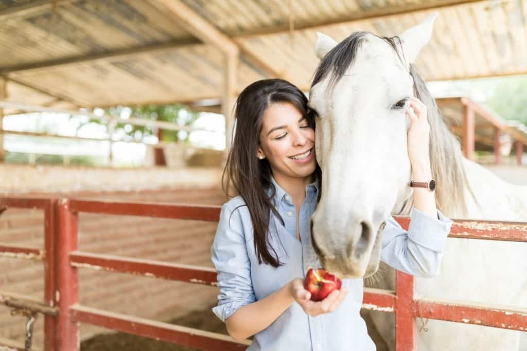 lady giving apple to her new horse