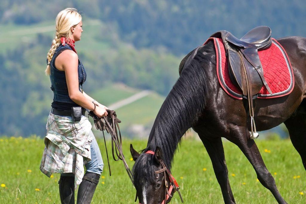 a lady in braid feeding her horse