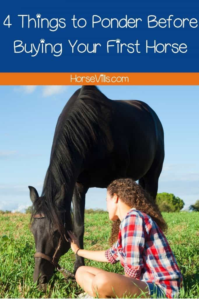 things to know before buying your first horse