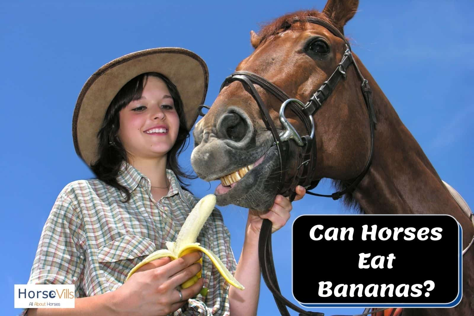 A lady giving banana to a brown horse but can horses eat bananas?