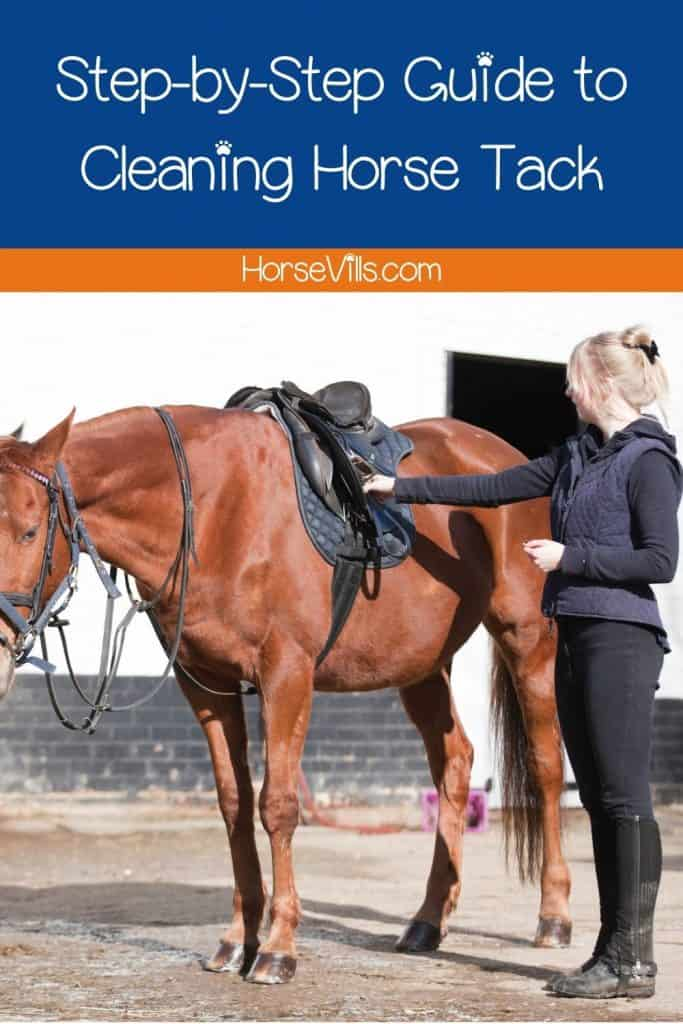 an equestrian showing a demo on how to clean a horse tack properly