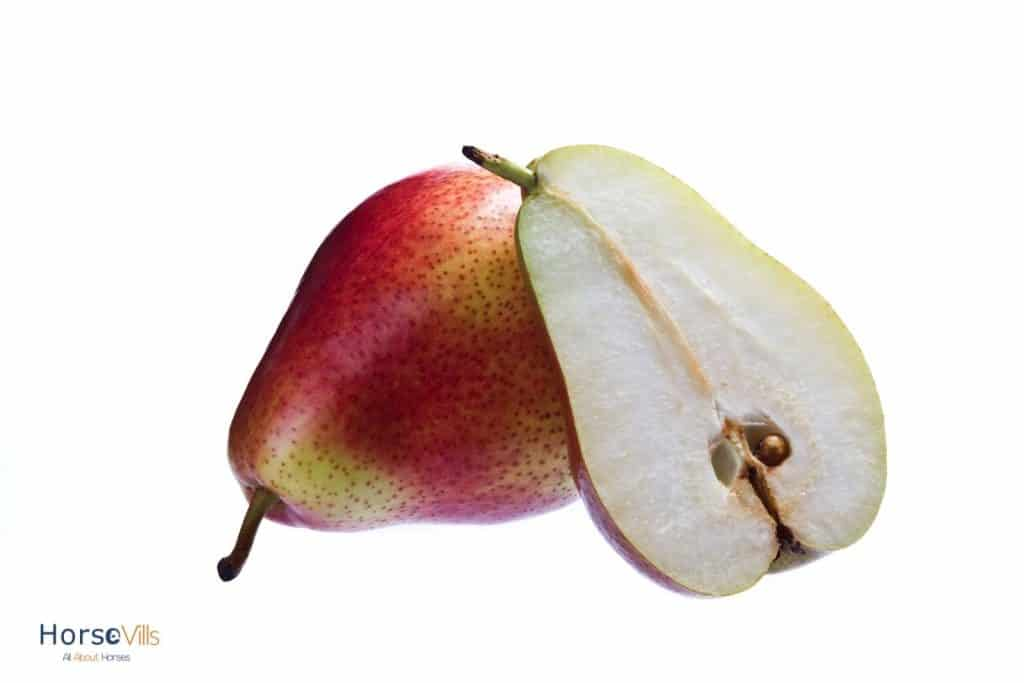 pears cut into two: can horses eat pear seeds?