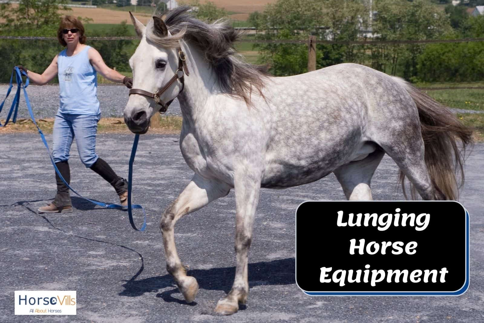 a lady using lunging horse equipment and demonstrating on how to use them