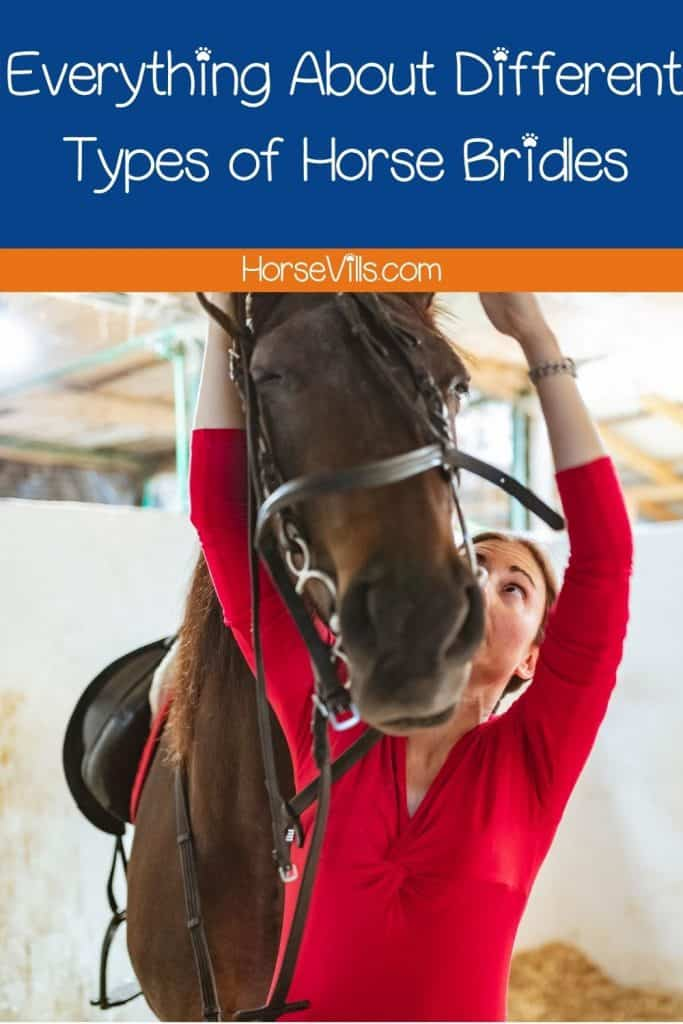 a lady showing a demo on how to put different types of horse bridles to a stallion