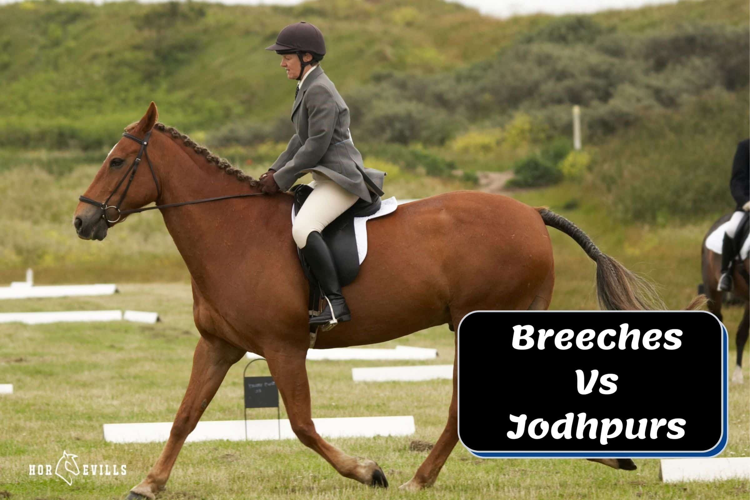 woman wearing pale cream jodhpurs while riding a brown horse: Breeches Vs Jodhpurs