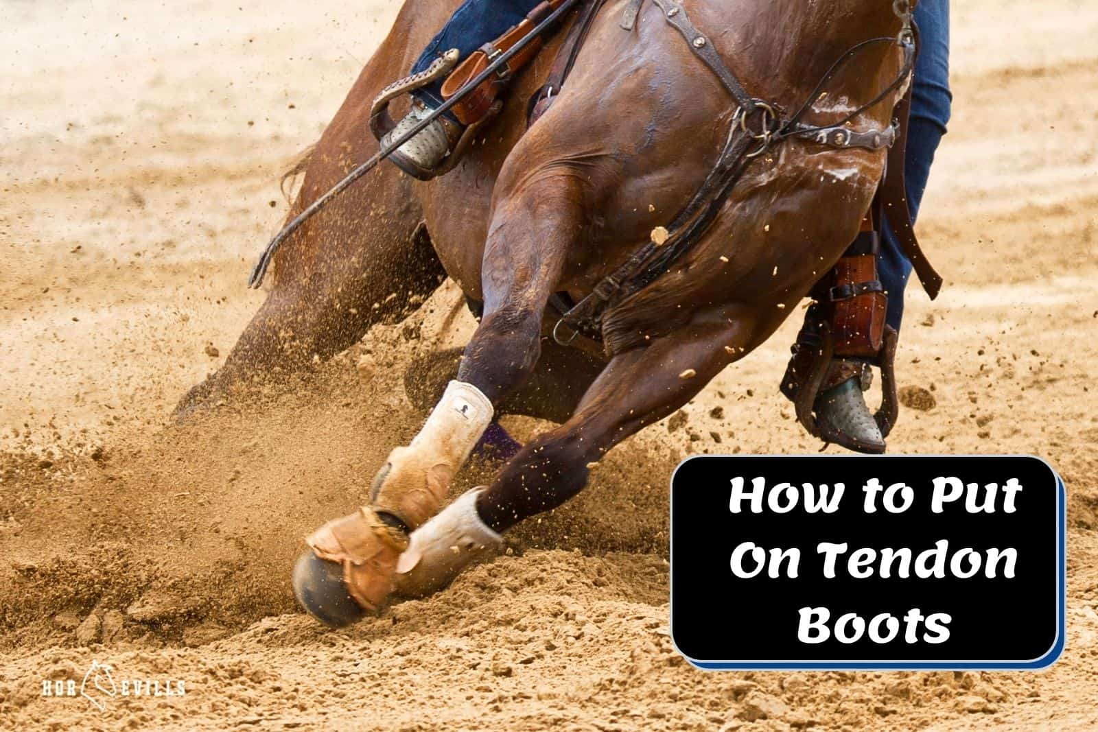 horse racing with white tendon boots but how to put on tendon boots correctly?