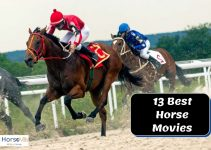 13 Must-Watch Horse Movies to Stream at Home