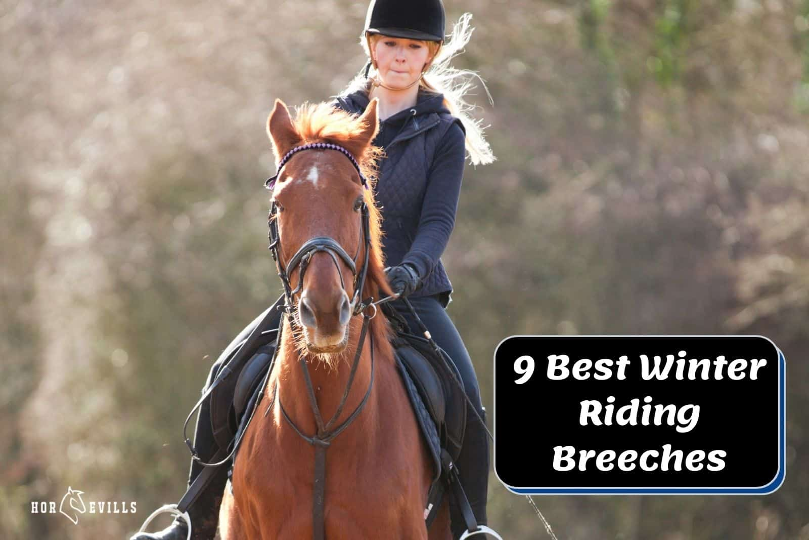 an equestrian lady in her best winter riding breeches