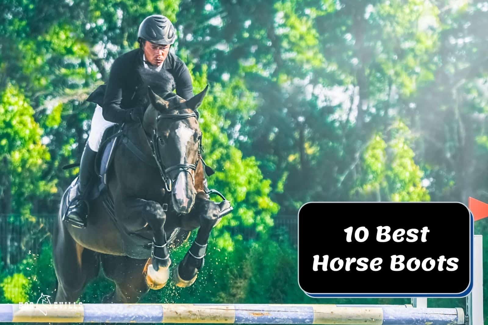 equestrian riding a horse with the best horse boots