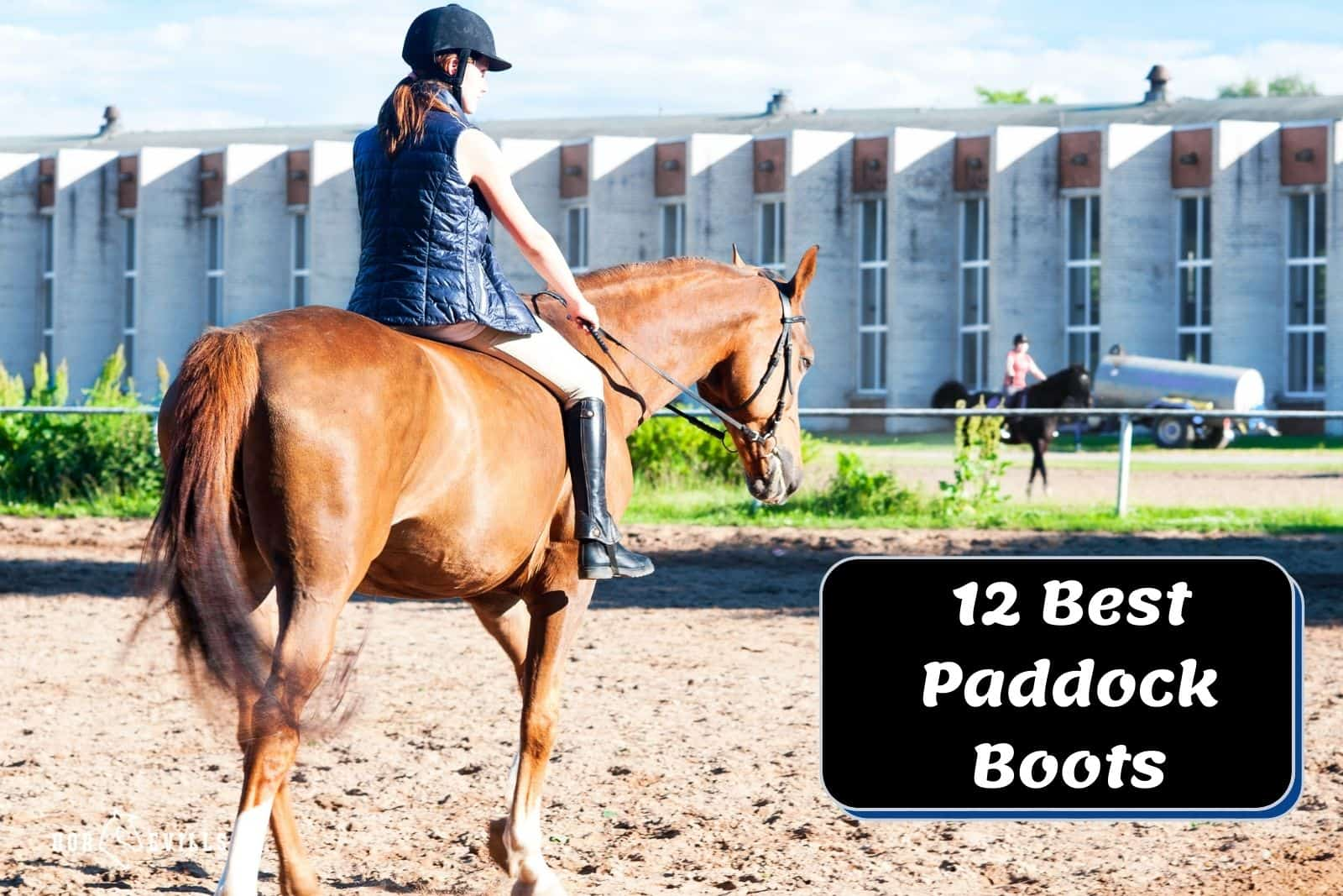 equestrian lady using her best paddock boots while riding a horse