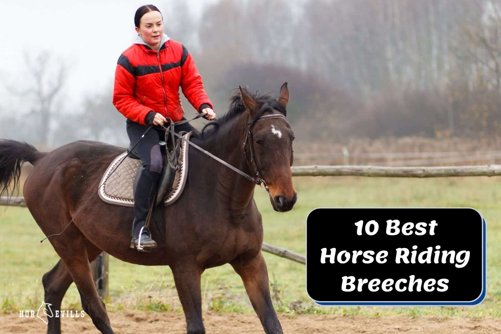 lady using her best best riding breeches