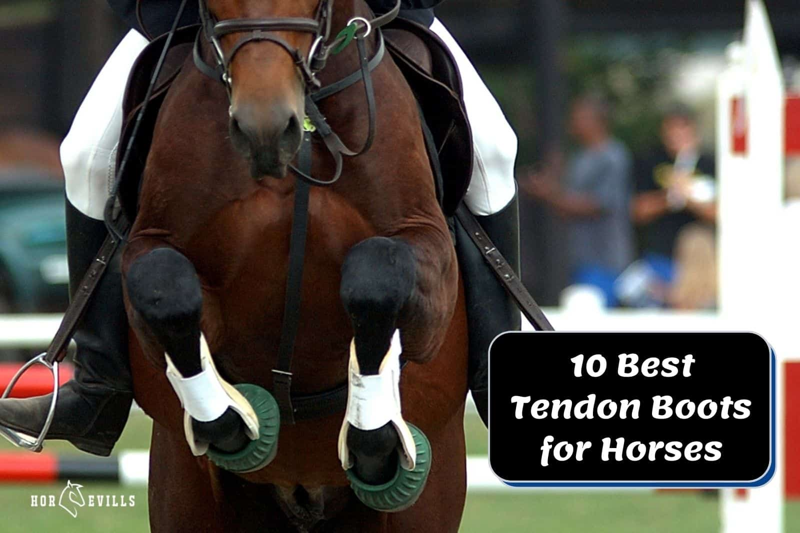 brown horse wearing the best tendon boots for horses in the showjumping competition