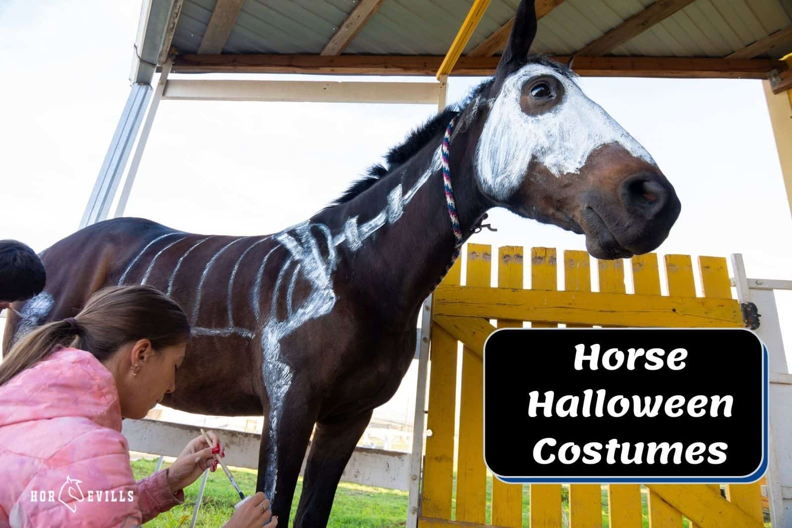 lady painting her horse's body for his Horse Halloween costumes