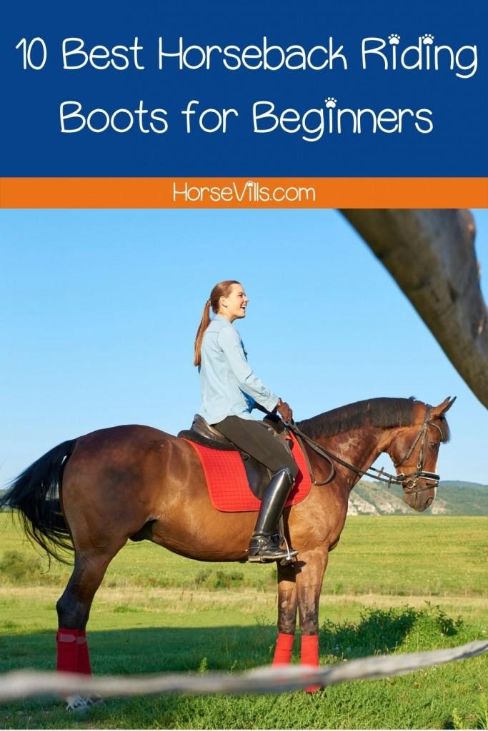 a beginner riding a brown horse