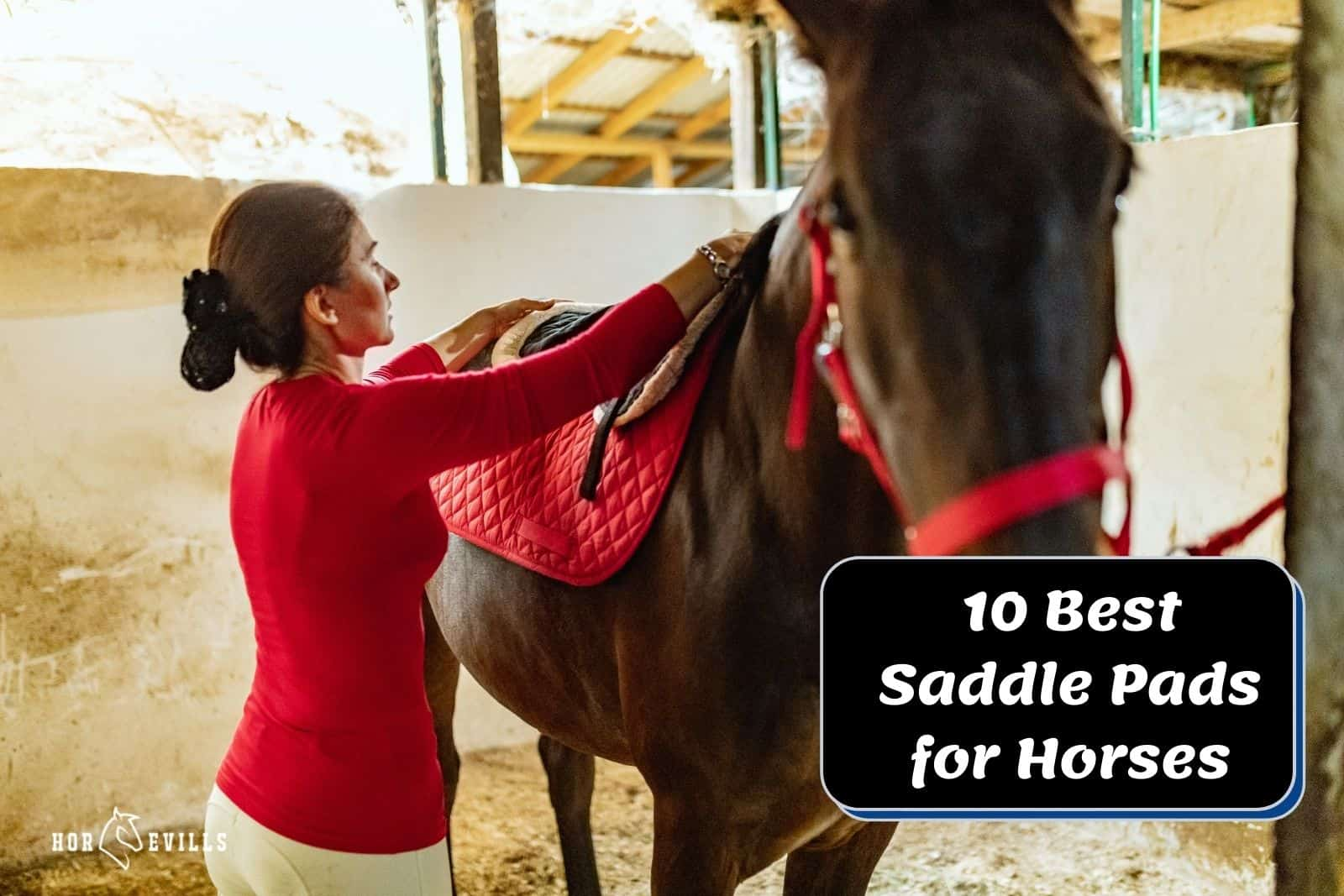lady fitting the best saddle pads for horses to her stallion