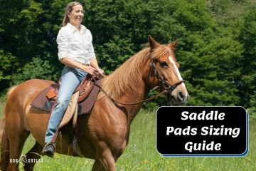 Saddle Pad Size Guide: Choosing the Right One